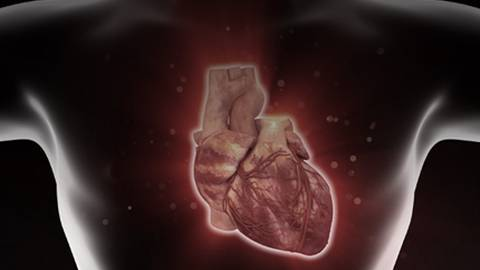 Identifying Unstable Coronary Plaques