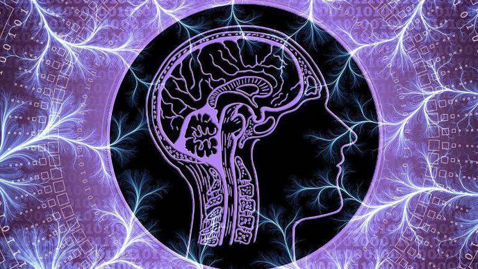Study Links Brain Thinning to Psychosis