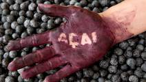 Marketers of Acai Berry Weight-Loss Pills to Pay $1.5 Million in FTC Settlement