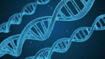 Twin Study Highlights Importance of Genetics and Environment on Gene Activity
