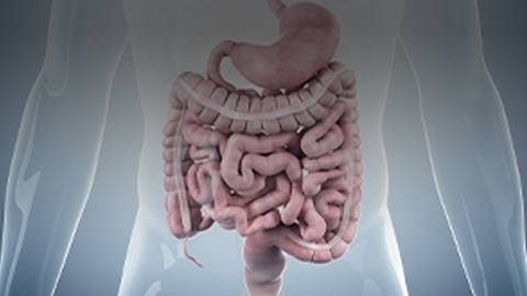 Clinical Trial Data on an IBS-D Treatment