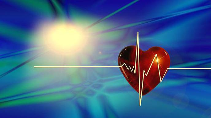 Key Research Advance Could Spawn New Treatments for Heart Diseases