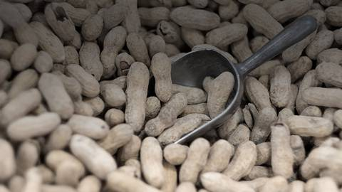 Progress in Peanut Allergy: What to Know About the First FDA-Approved Treatment