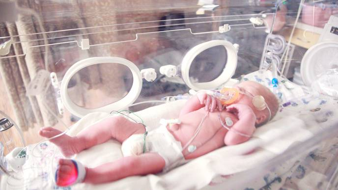 Study Reveals Immune Cells That Drive Gastrointestinal Disease in Babies