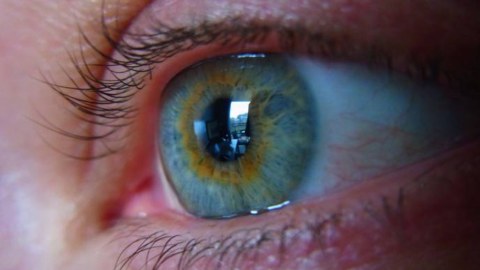 Researchers Uncover Protective Factor in Diabetic Eye Disease