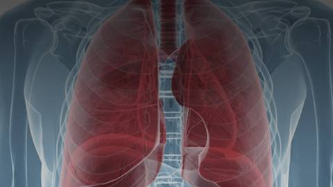 "Updates from the ""Pulmonary Pipeline"" of COPD Drug Developments"