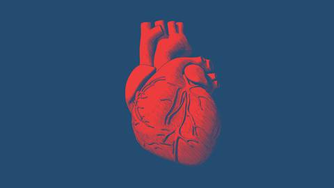 Improving Pump Function in Heart Failure with Reduced Ejection Fraction
