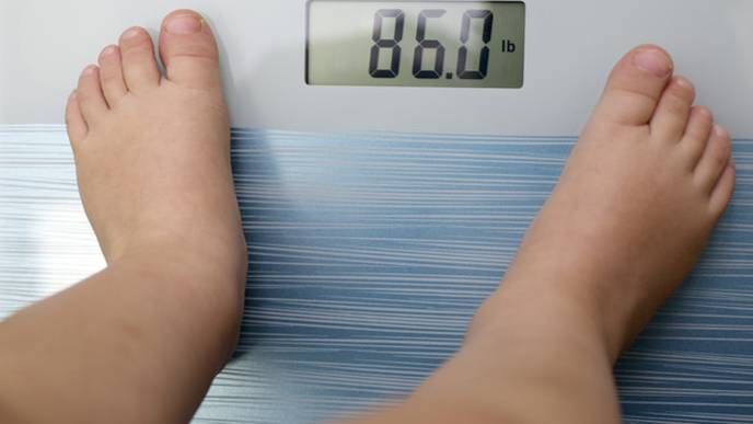 Obesity: 'We have Gained One Pound a Year over the Past Twenty Years'