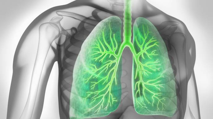 Beta-Blockers Don't Reduce Risks for COPD Patients