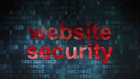 Keeping Your Website Safe from Hackers: Security Plugins and Backups that Work