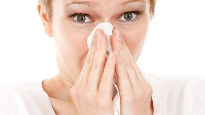 Multiple Genes Affect Risk of Asthma, Hay Fever, & Eczema