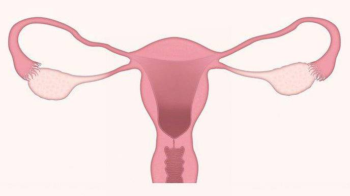 A Potential Agent for Treating Preeclampsia