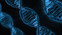 Researchers Use Big Data to Gain Better Understanding of Hepatitis E Virus
