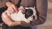 How Proper Sleep can Make Diabetes Management Successful