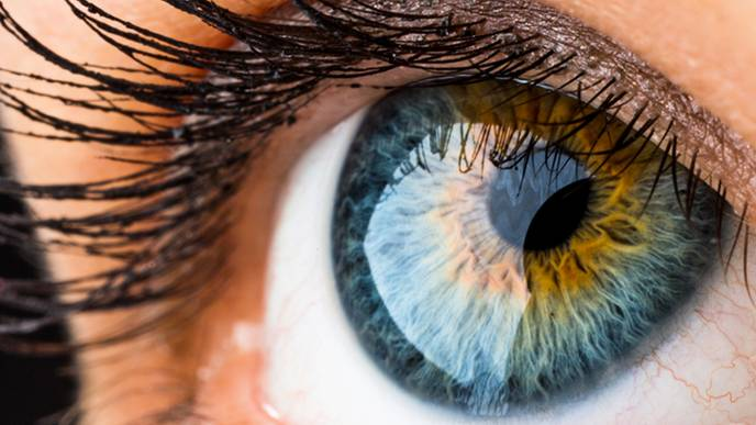 Eye scans could reveal Alzheimer's disease at earliest stages