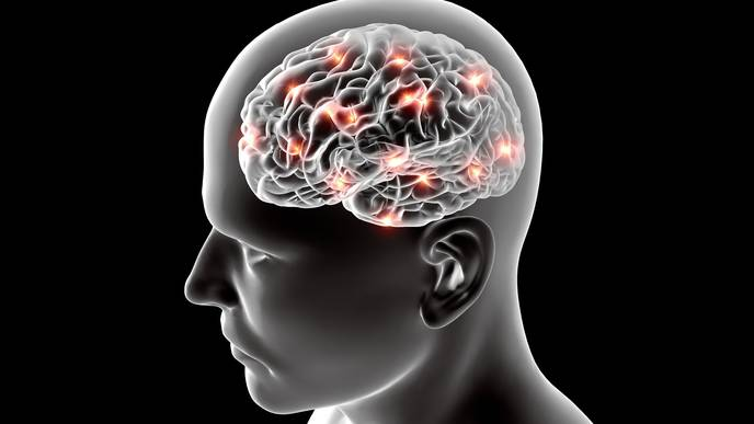 A Promising New Target to Combat Alzheimer's Disease Identified