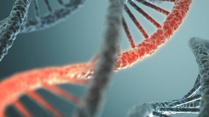 DNA and RNA Could've Appeared Together Before Life Began on Earth