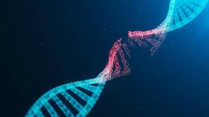Autism-Related Gene Mutations Occur in Alzheimer Patients