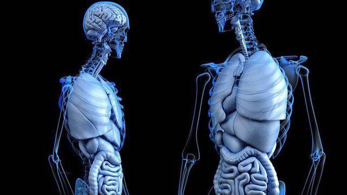 New Algorithm Can Predict Advanced Liver Disease