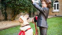 Diabetes-Detection Dogs Help Patients Avoid Serious Blood Sugar Crashes