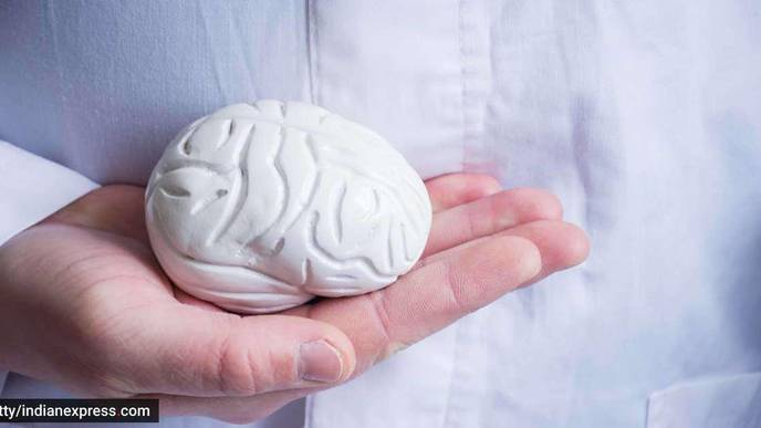 Flow Diverter Mechanism Finding Favor in Tackling Brain Aneurysms