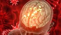 New Advances Made in the Pursuit of a Brain Cancer Cure