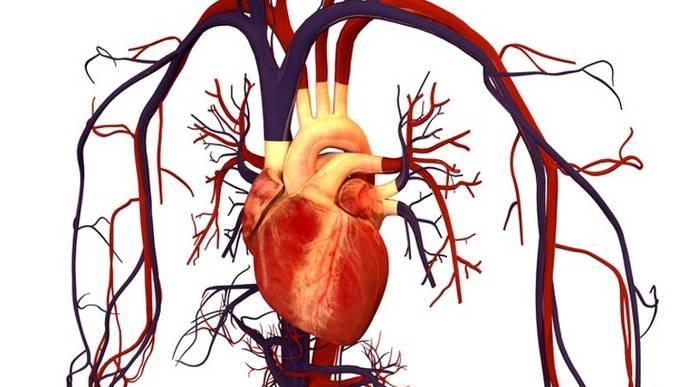 Stress Cardiac MRI Can Diagnose Fatal Cases of Coronary Artery Disease