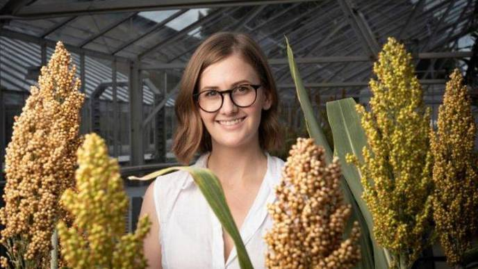 Hotter, Drier, CRISPR: Editing Plants for Climate Change