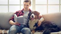Study: Chemical Pollutants At Home Degrade Fertility in Both Men and Dogs