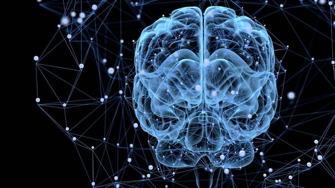 New Genetic Cause of Epilepsy Found