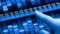 Genetic Screening of Parents and Embryos Spreads as Costs Fall