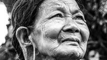 Parental Lifespan Predicts Daughters Living to 90