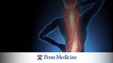 Neck and Back Pain: When Should You Refer Your Patients to a Neurosurgeon?