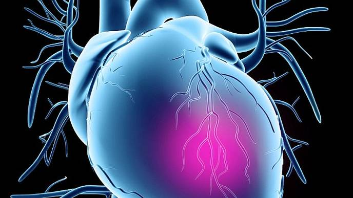 Teens Show Decreased Risk for Heart Disease after Bariatric Surgery