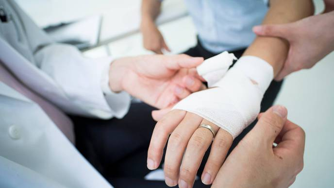 A New Approach to Understanding the Biology of Wound Healing