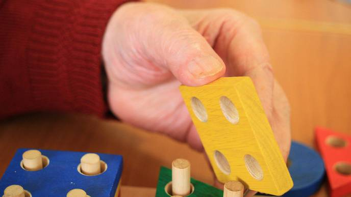 Fighting Dementia with Play: Cognitive Motor Training Improves Function