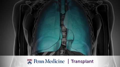 The Path to Lung Transplantation: Roles of Extracorporeal Membrane Oxygenation (ECMO)