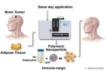 New Approaches to Immunotherapy for Glioblastoma