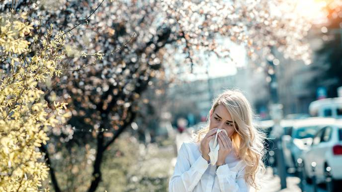 CDC: Seasonal Allergies Affect 24.4 Million in the US