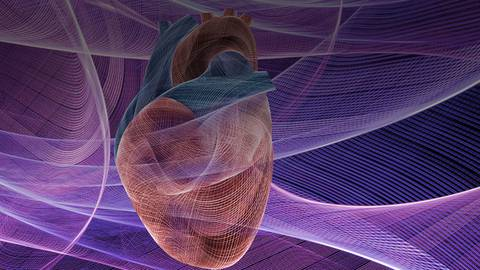 Cardio-Oncology: An Emerging Field to Improve Cardiovascular Care for Cancer Patients