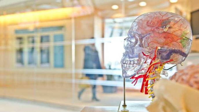 Tracer Molecule May Improve Imaging Tests for Brain Injury