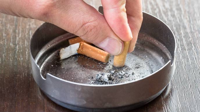 Quitting Smoking Could Lead to Major Changes in Gut Bacteria