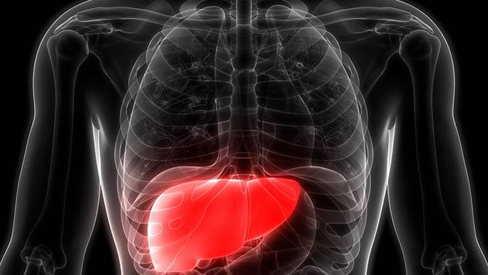 Researchers Develop Noninvasive Method to Detect Early-Stage Liver Disease