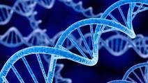 Genetic Tests Often Overused and Misinterpreted