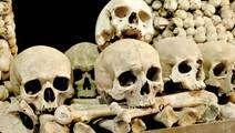 We Were Wrong About Rats Spreading The Black Death Plague