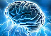 Document for Download: Multiple Sclerosis Physician Resources