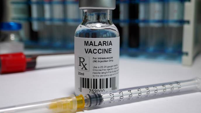 Pregnancy-Associated Malaria Vaccine Passes First Human Trial