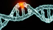 Using Genetic Information to Find the Root Cause of Unexplained Illnesses