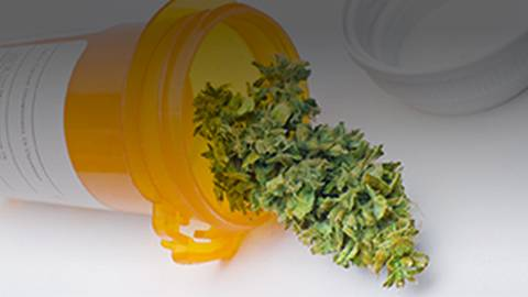 Hope vs Hype for Medical Marijuana From the Center for Medical Cannabis Education & Research