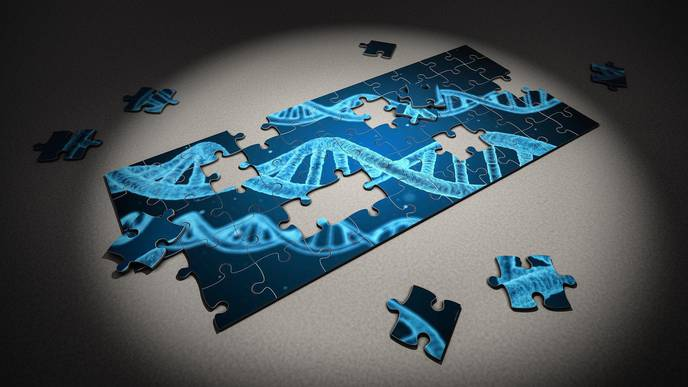 Scientists ID Genetic Factors That May Cause Some People to Become Obese